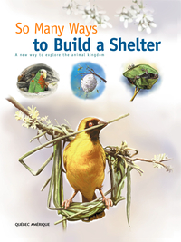 Image de couverture (So Many Ways to Build a Shelter)