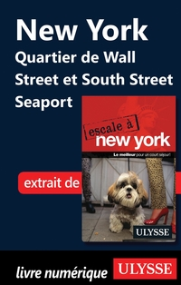 New York Quartier de Wall Street et South Street Seaport