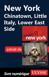 New York - Chinatown, Little Italy, Lower East Side