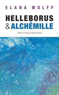 Helleborus & Alchémille