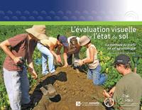 L'évaluation visuelle de l'état du sol