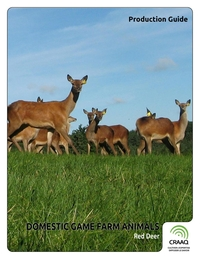 Domestic Game Farm Animals - Red Deer