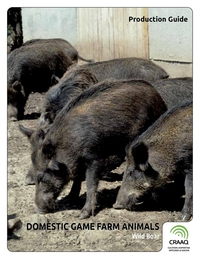 Domestic Game Farm Animals - Wild Boar