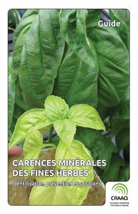 Carences minérales des fines herbes - Identification, prévention et solutions