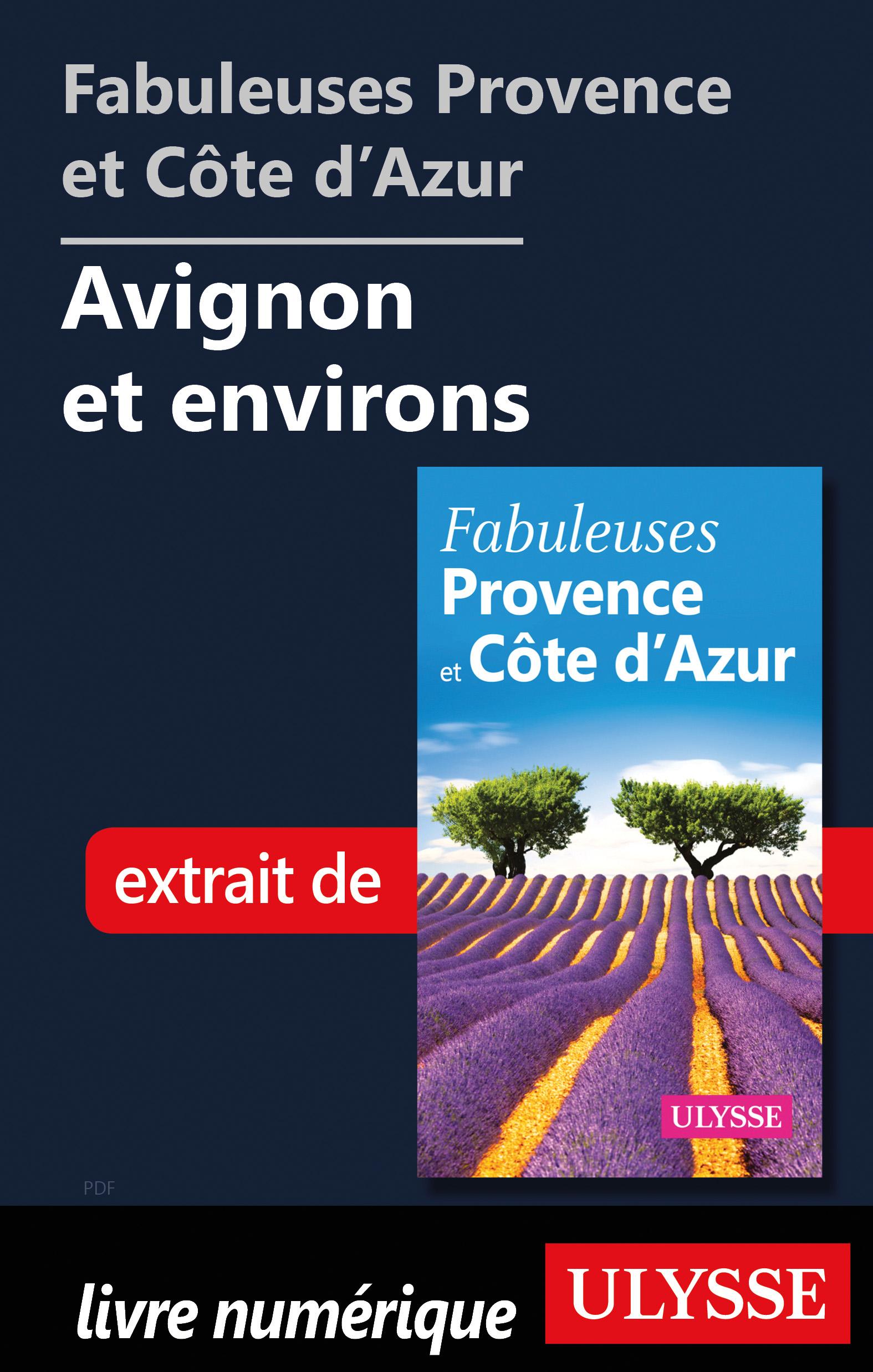 Fabuleuses Provence et Côte d'Azur: Avignon et environs