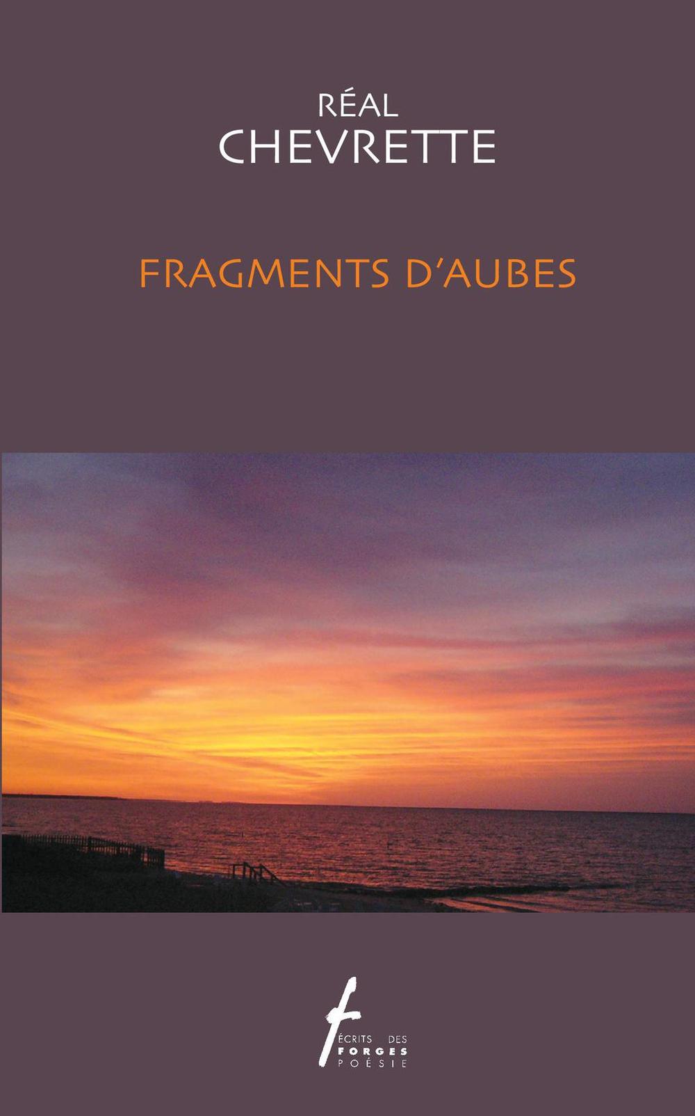 Fragments d'aubes