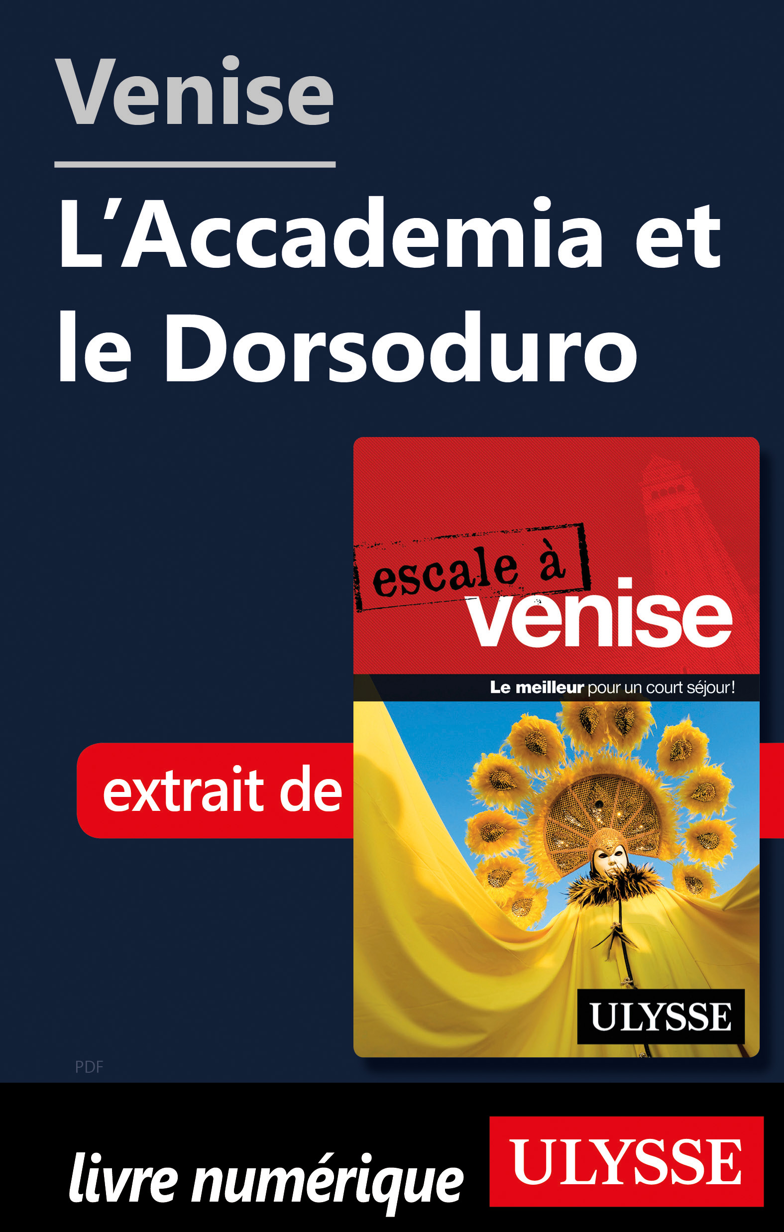 Venise - L'Accademia et le ...