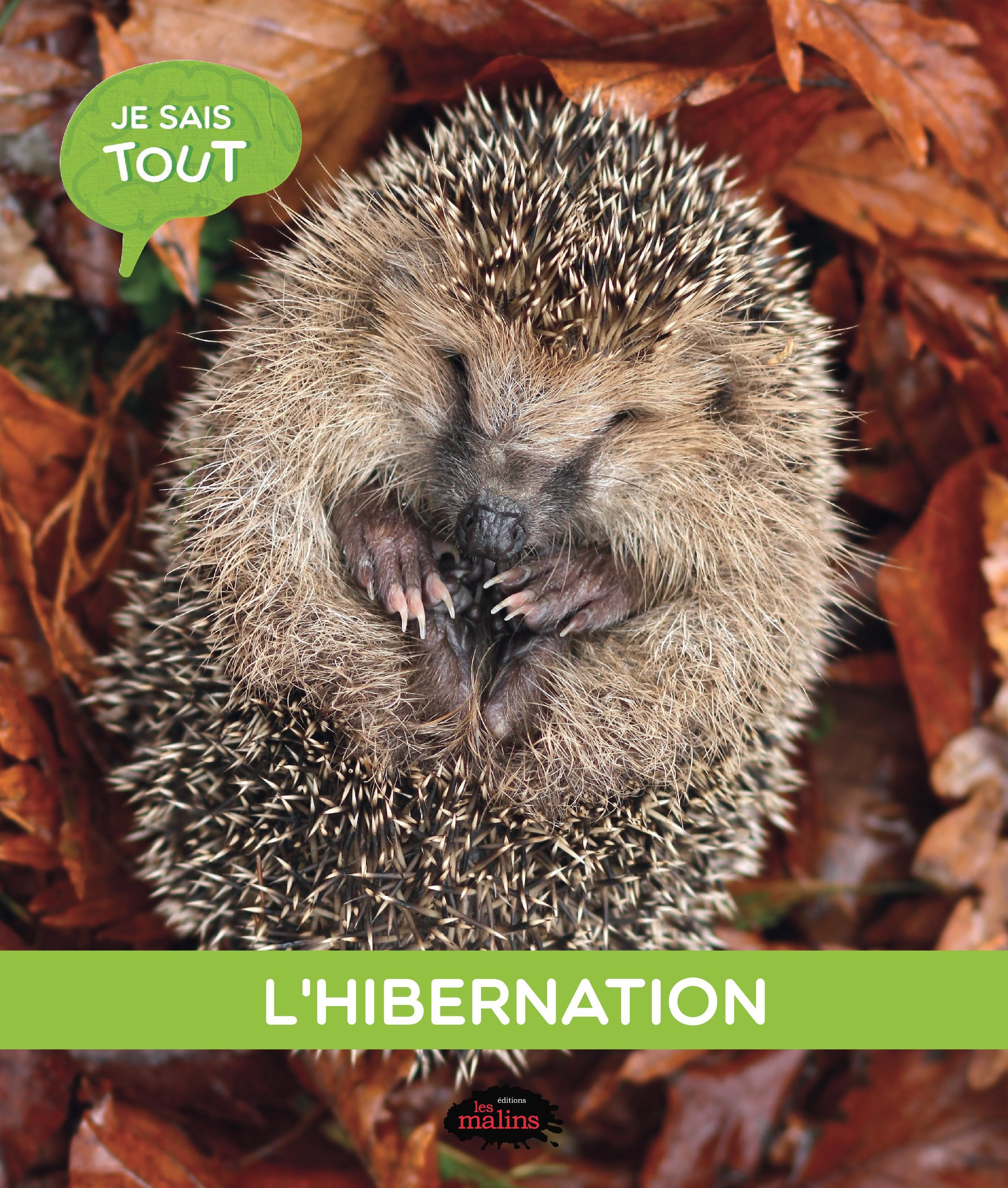 Je sais tout: L'hibernation