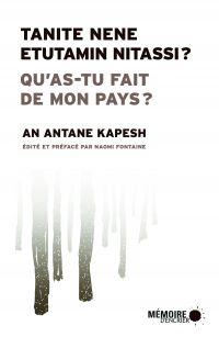 Image de couverture (Qu'as-tu fait de mon pays? Tanite nene etutamin nitassi?)