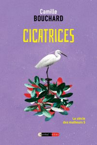 Cover image (Cicatrices)