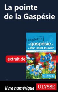 La pointe de la Gaspésie