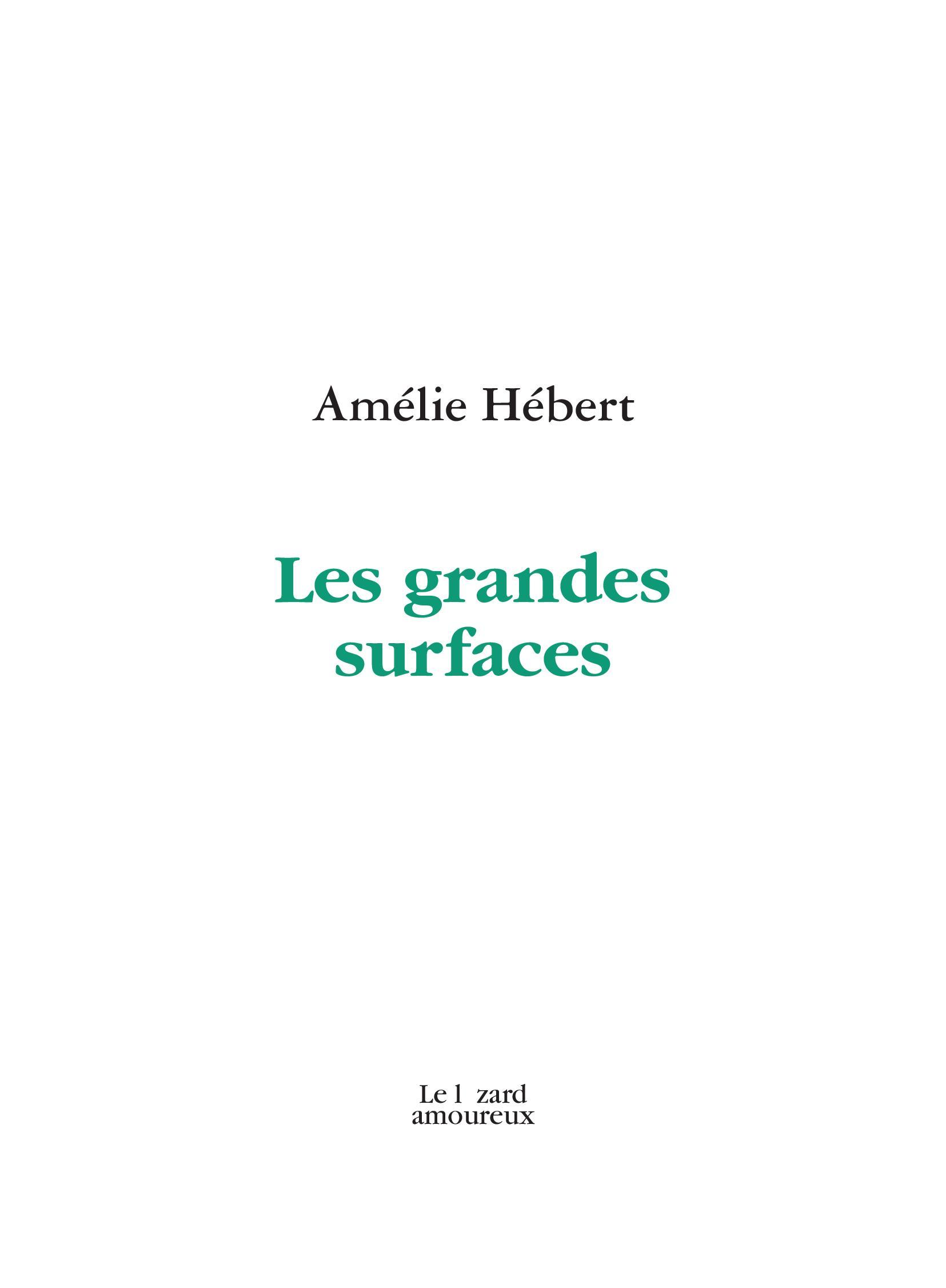 Les grandes surfaces