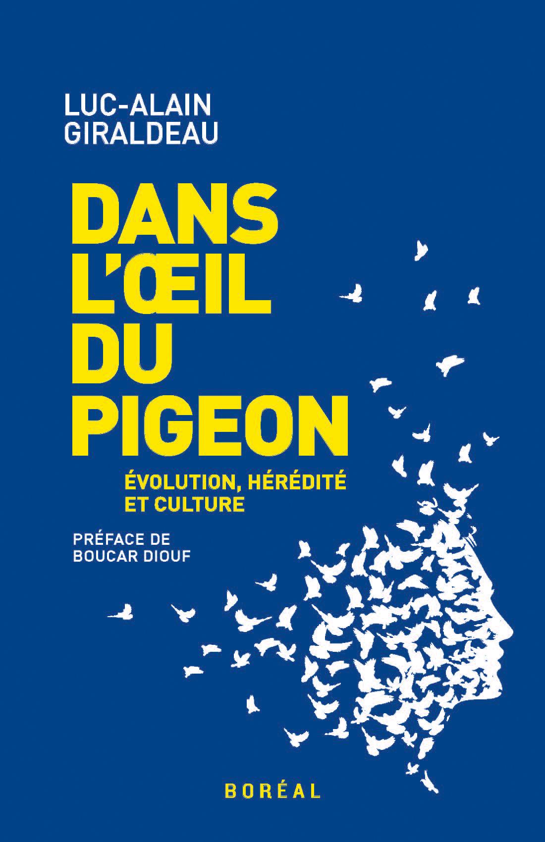 Dans l'œil du pigeon