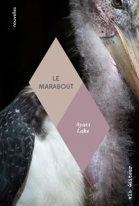 Book cover of Le marabout.