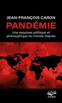 Pandémie : une esquisse pol...