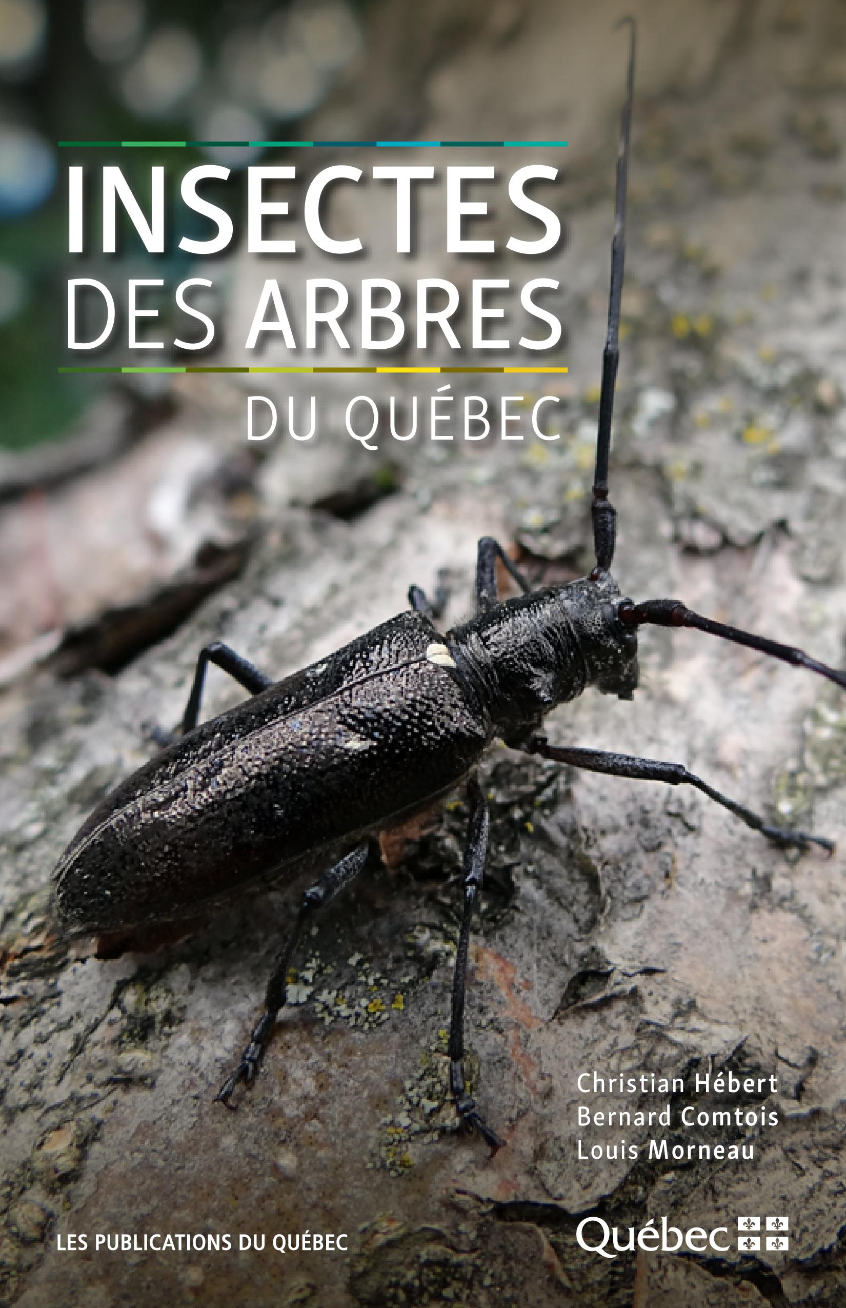 Insectes des arbres du Québec