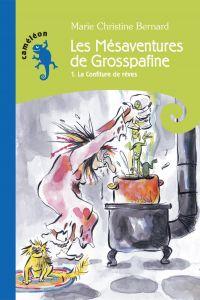 Image de couverture (Les Mésaventures de Grosspafine T1)