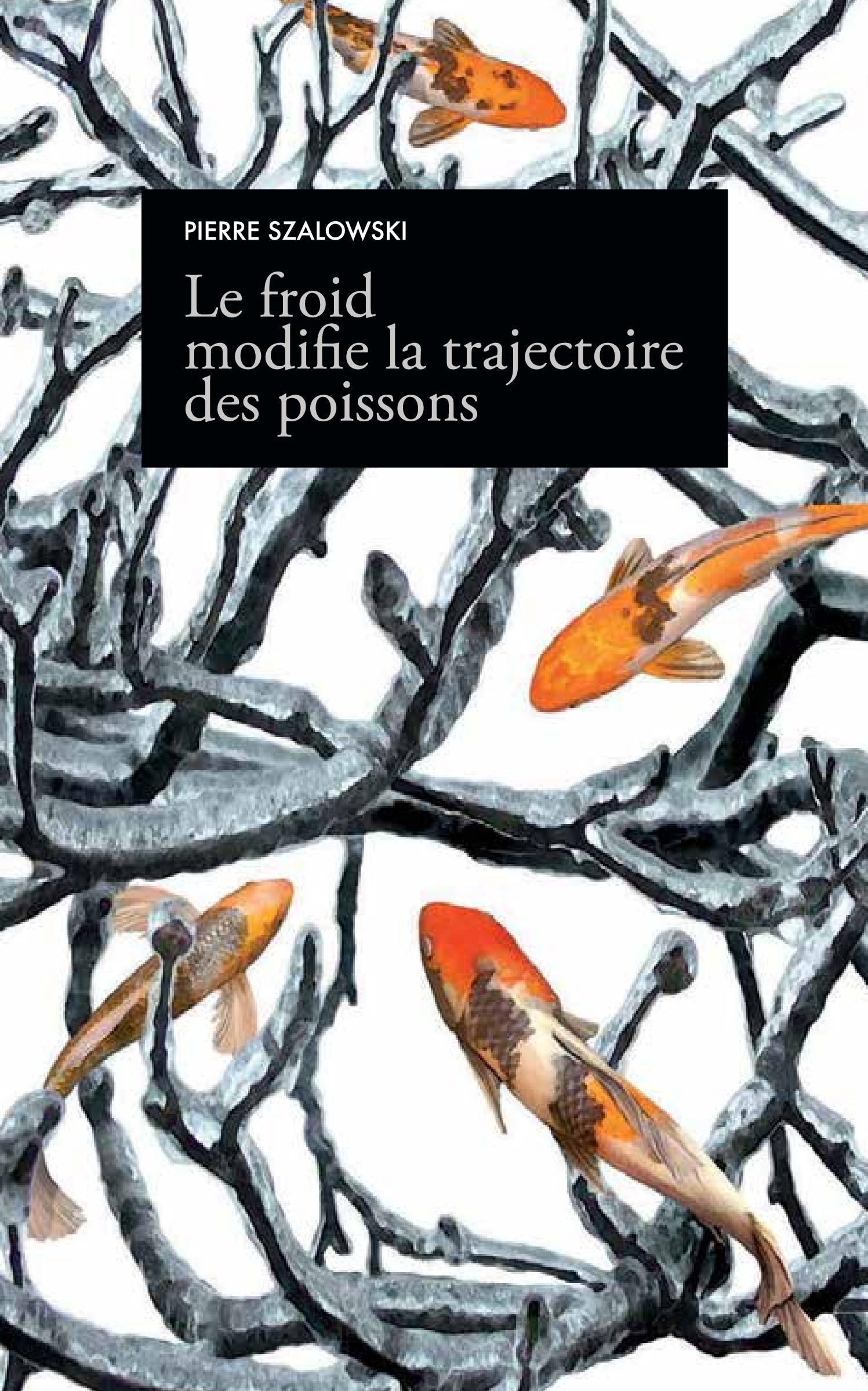 Le froid modifie la trajectoire des poissons