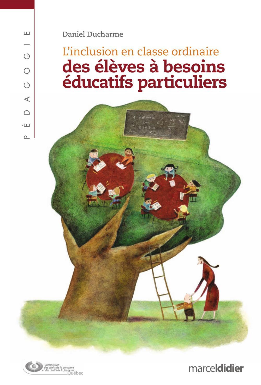Inclusion en classe ordinaire des élèves à besoins éducatifs particuliers