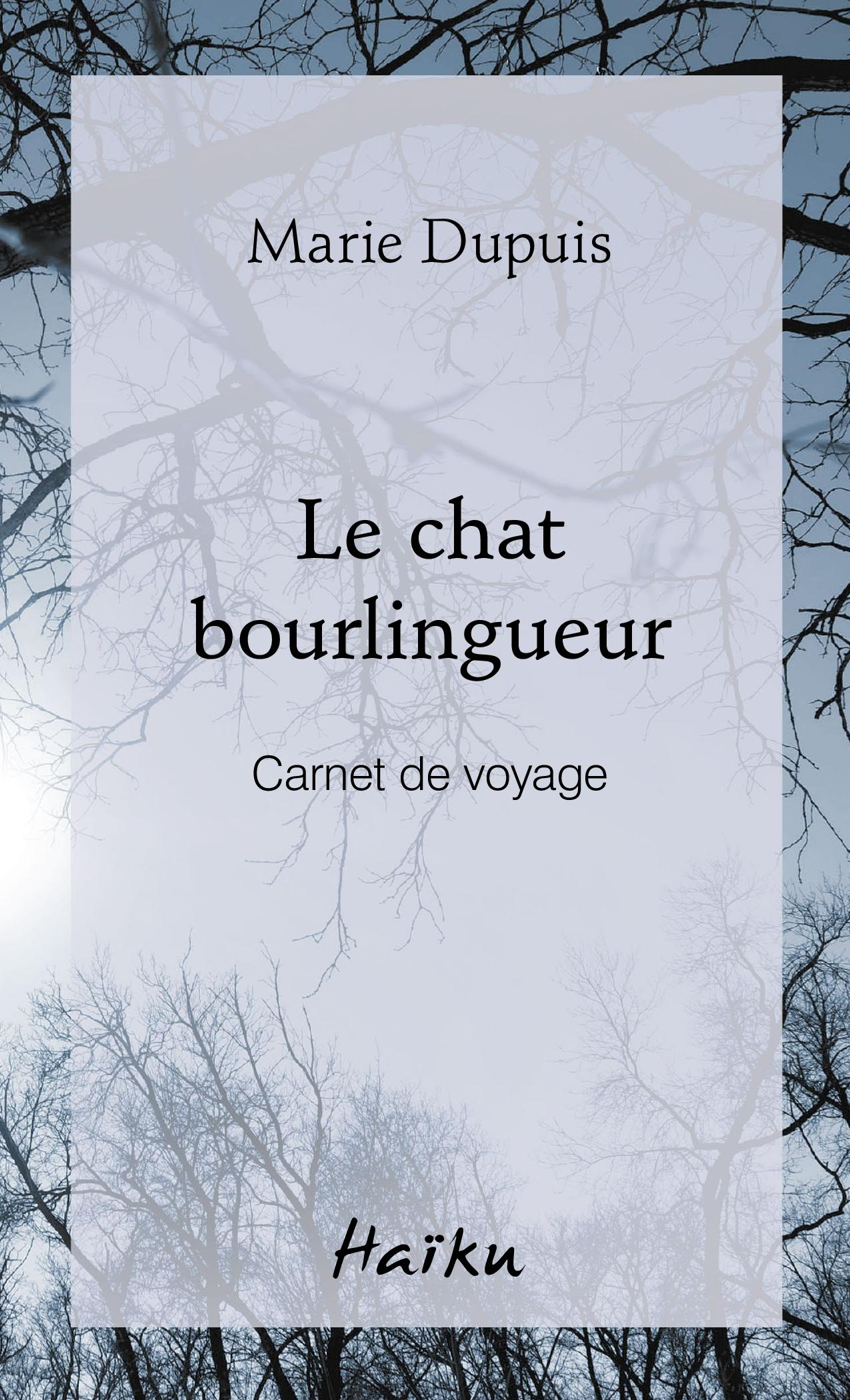 Le chat bourlingueur