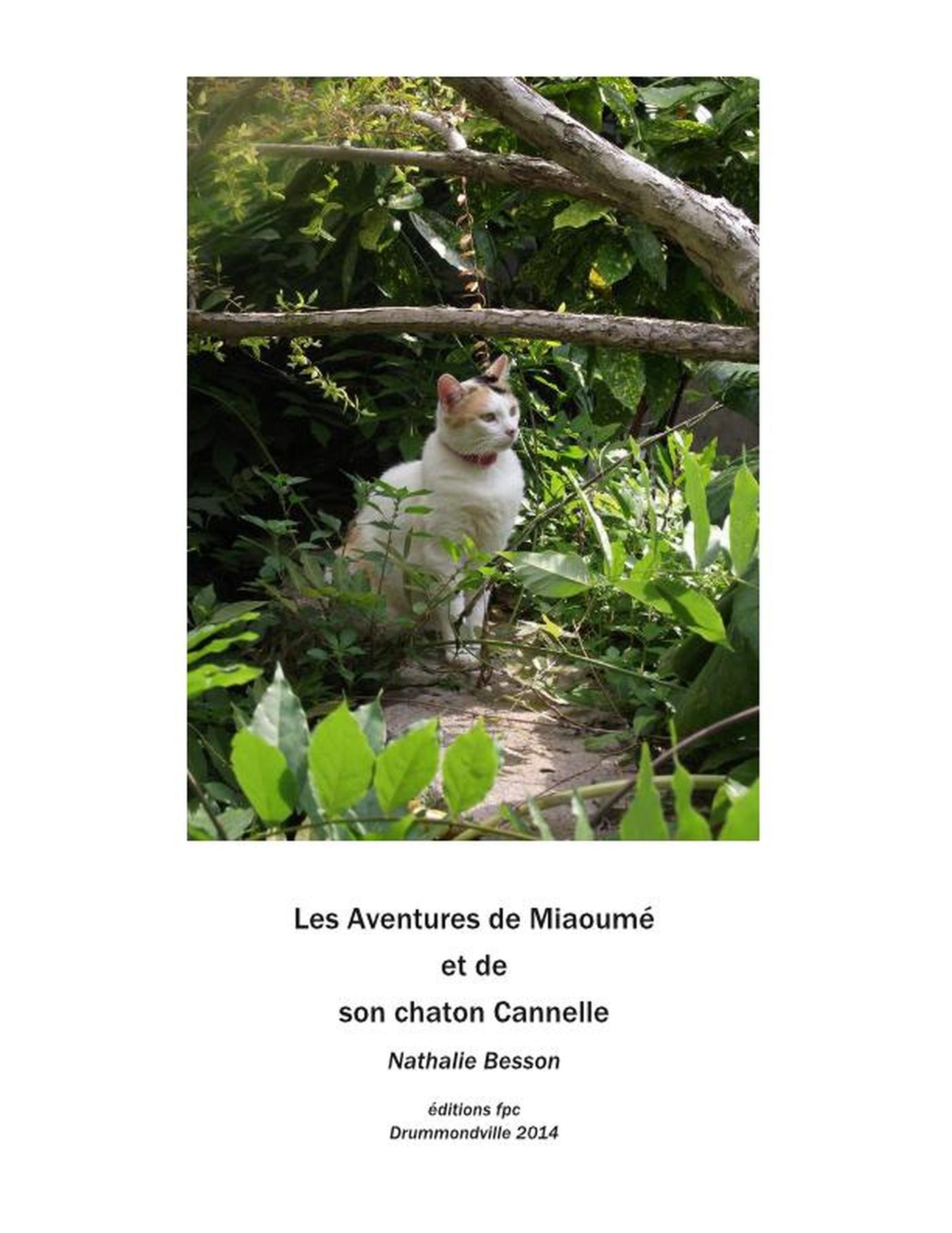 Miaoumé, une chatte, et son...
