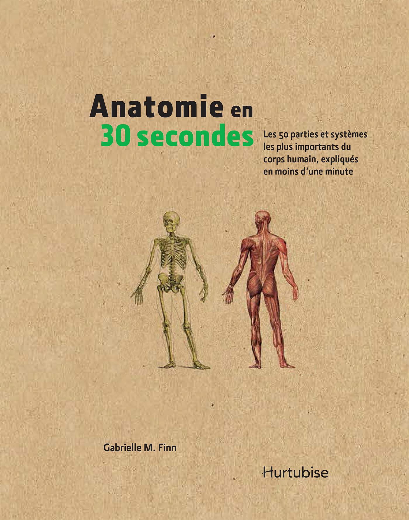 Anatomie en 30 secondes