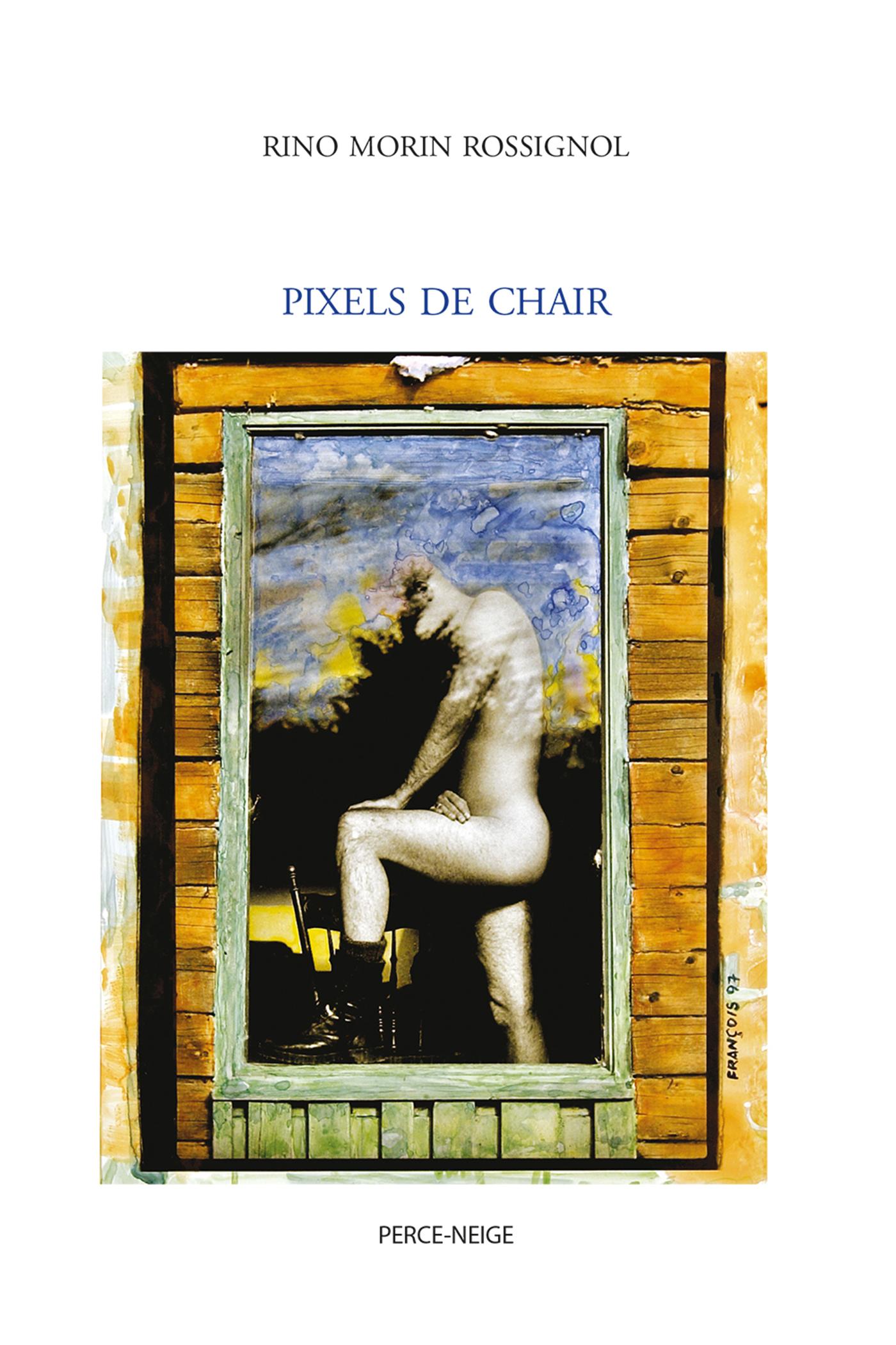 Pixels de chair
