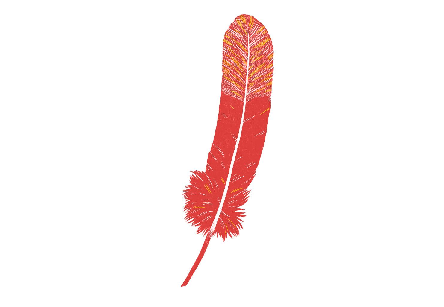 Enjeux autochtones: mieux transmettre
