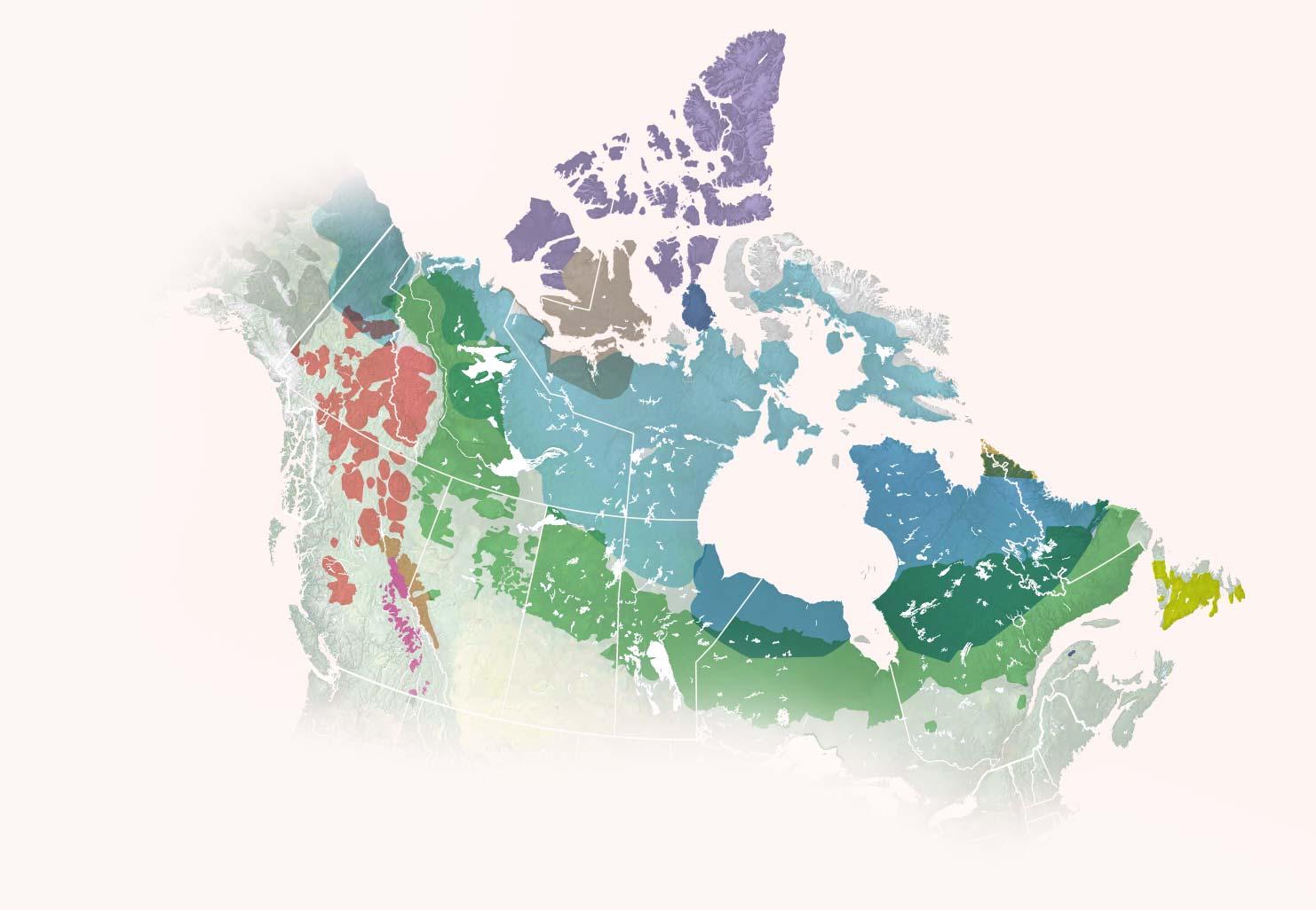 Cartographier le déclin du caribou
