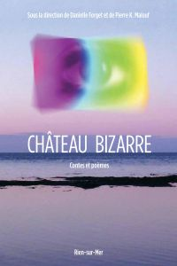 Image de couverture (Château bizarre)