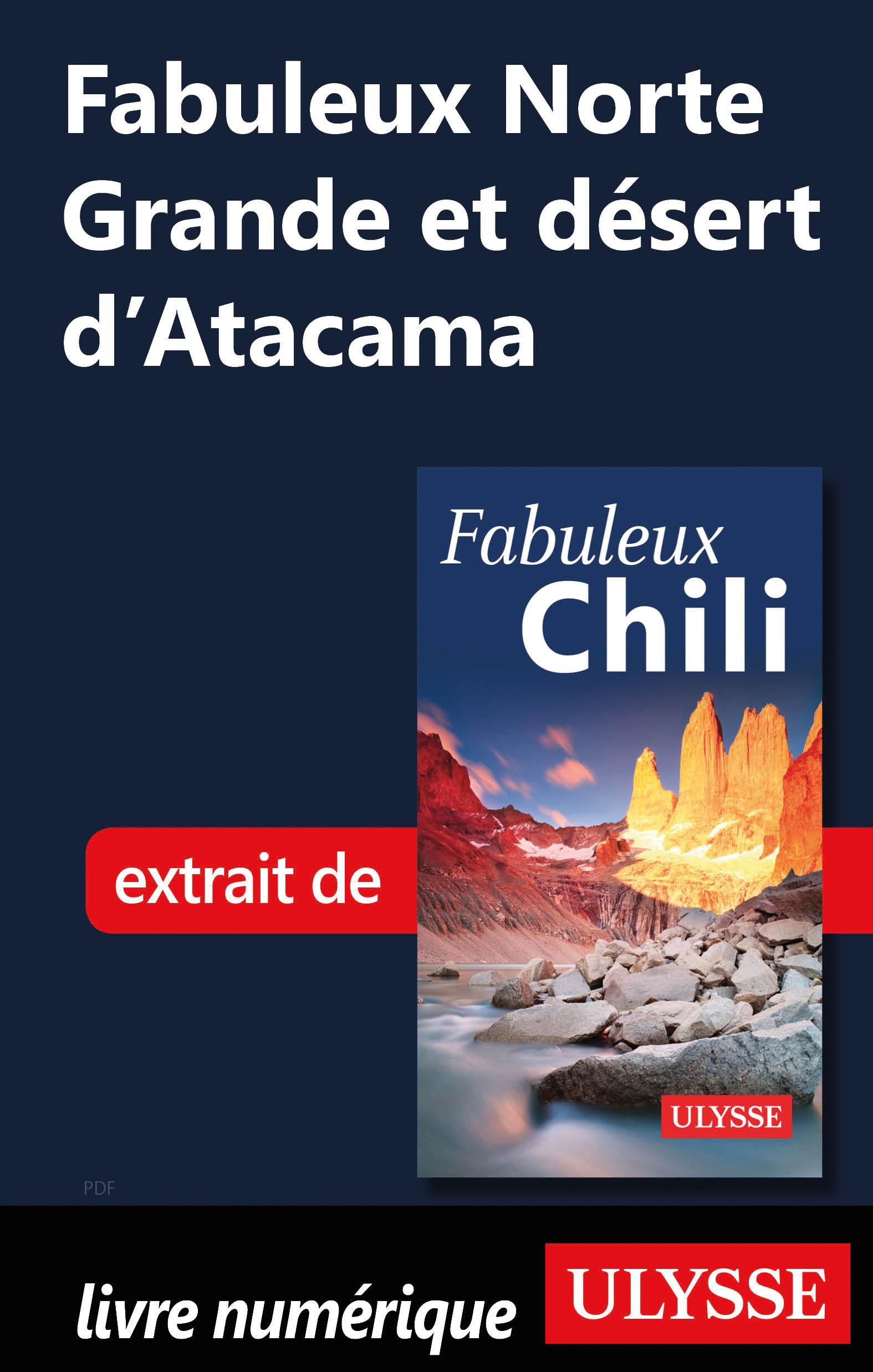 Fabuleux Norte Grande et désert d'Atacama (Chili)